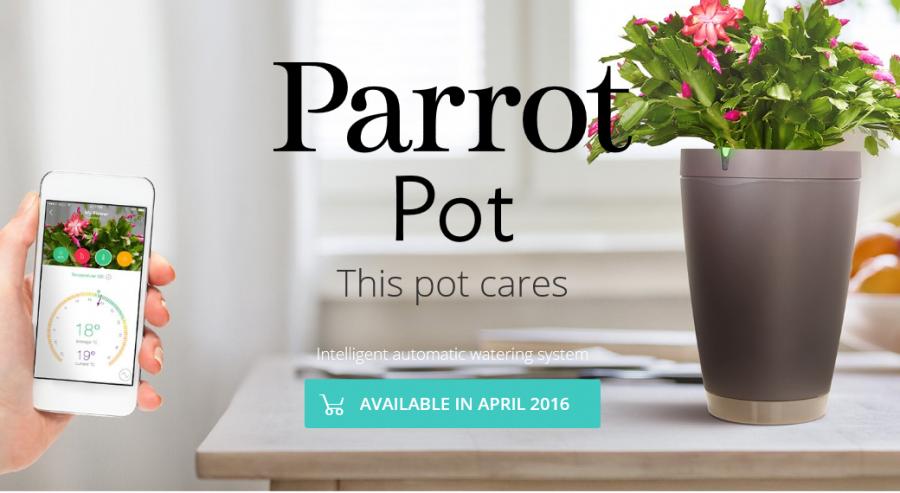 ParrotPot